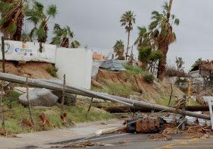 Hurricane Irma Hit Tuscon's Flora