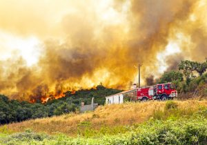 arizona brush fire