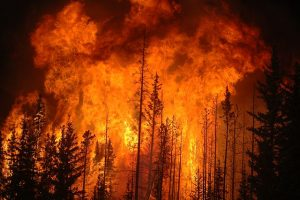 Read more about the article Bighorn Fire Closes Mount Lemmon and Sabino Canyon to the Public