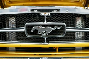 Read more about the article Ford EV Boss Slams Tesla: That Must Sting From The Mustangs!